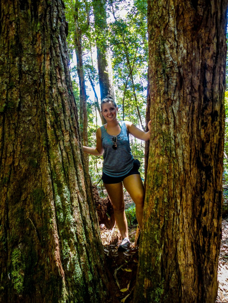 Hiking – Fraser Island, Australia
