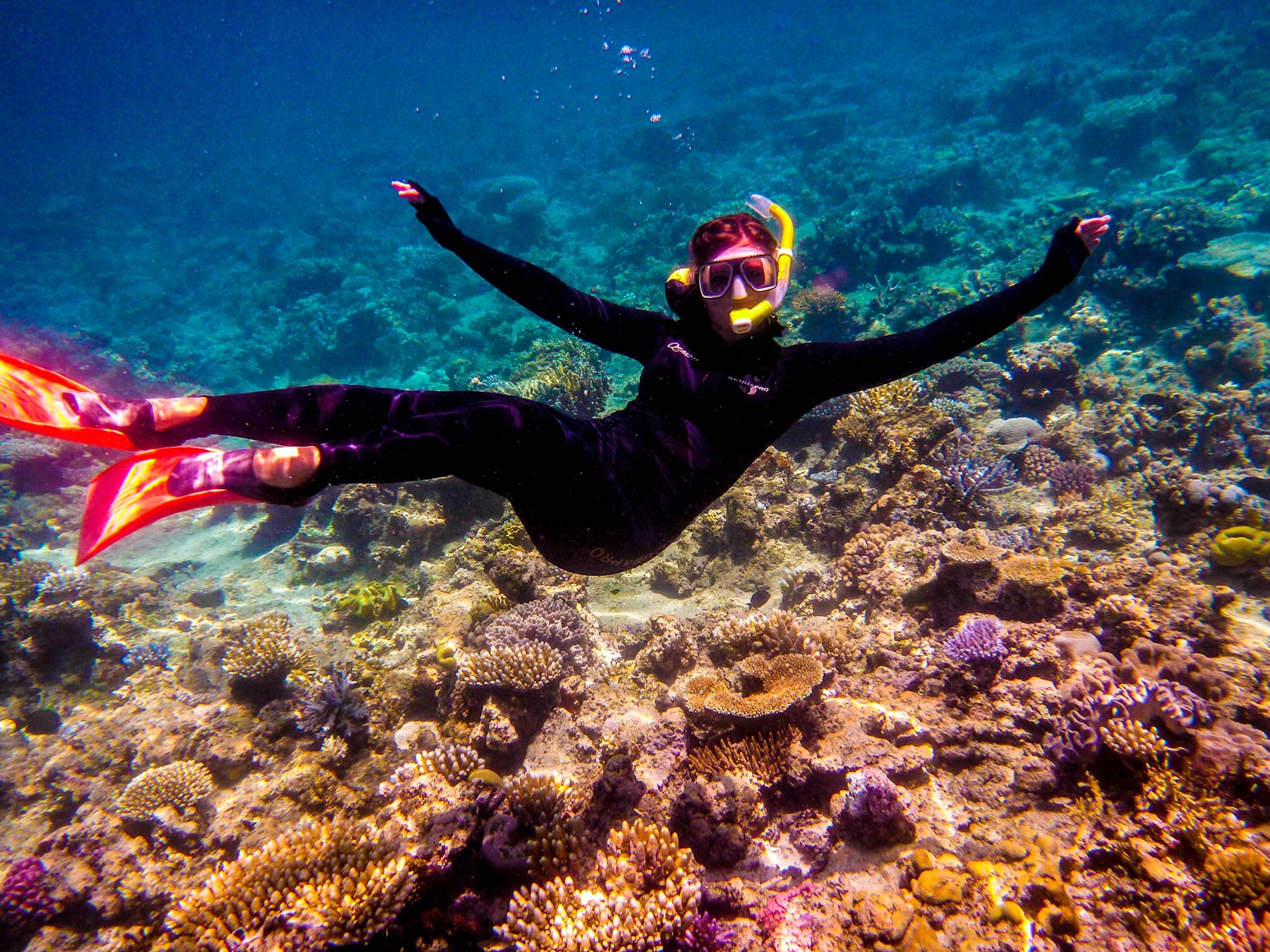 Snorkling – Great Barrier Reef, Australia